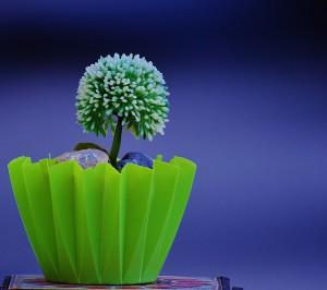 dobi virág ajándék balmazújváros